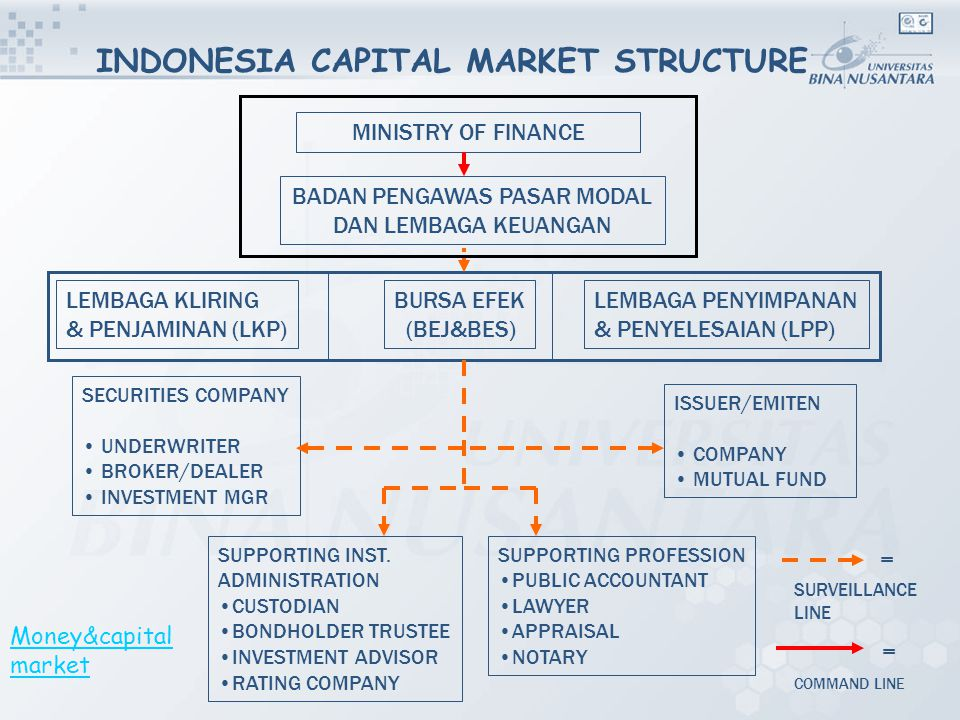 INDONESIA CAPITAL MARKET STRUCTURE SUPPORTING INST.