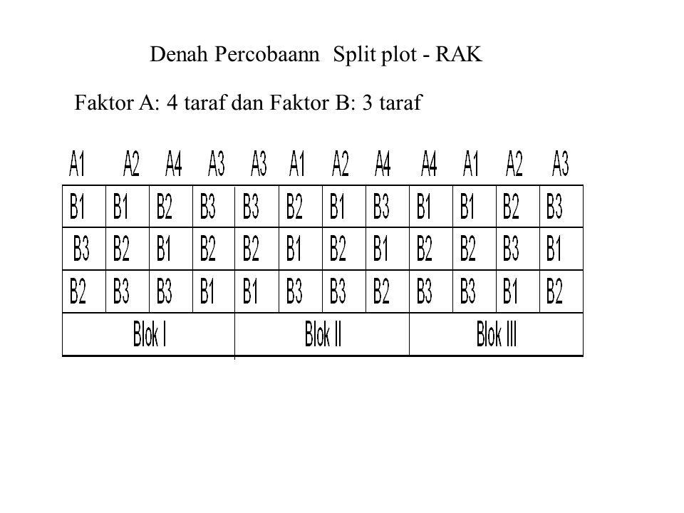 Denah Percobaann Split plot - RAK Faktor A: 4 taraf dan Faktor B: 3 taraf