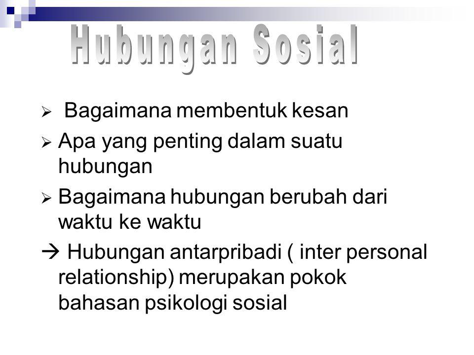  Bagaimana membentuk kesan  Apa yang penting dalam suatu hubungan  Bagaimana hubungan berubah dari waktu ke waktu  Hubungan antarpribadi ( inter personal relationship) merupakan pokok bahasan psikologi sosial