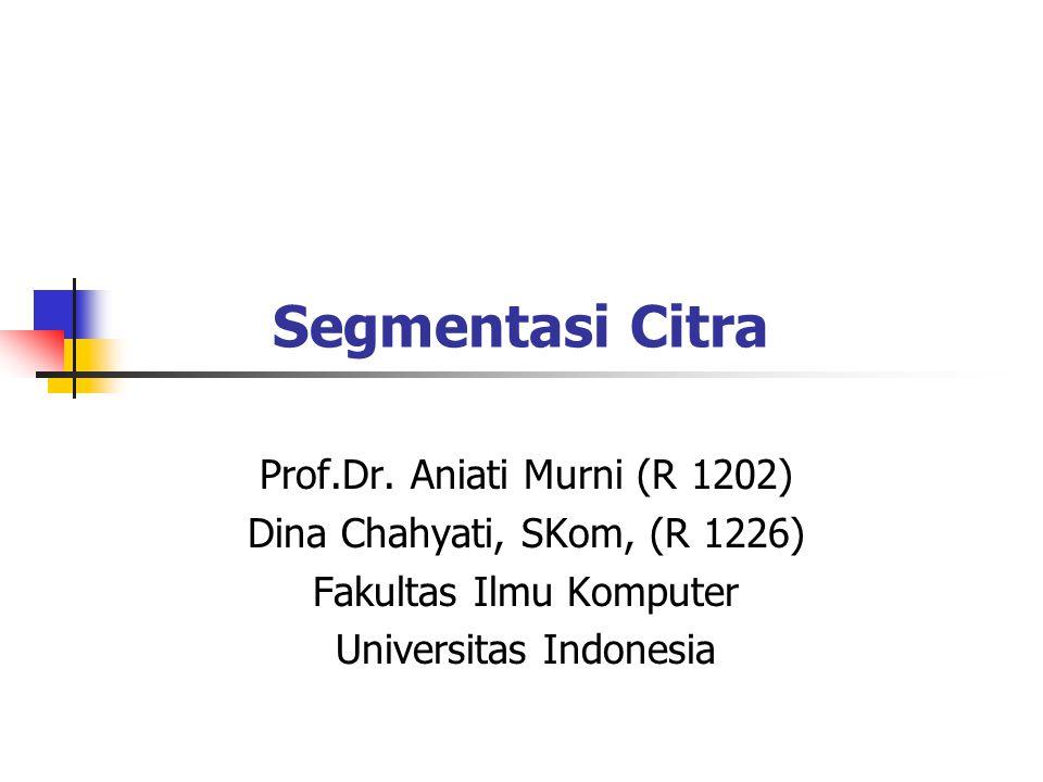 Segmentasi Citra Prof.Dr. Aniati Murni (R 1202) Dina Chahyati, SKom, (R 1226) Fakultas Ilmu Komputer Universitas Indonesia