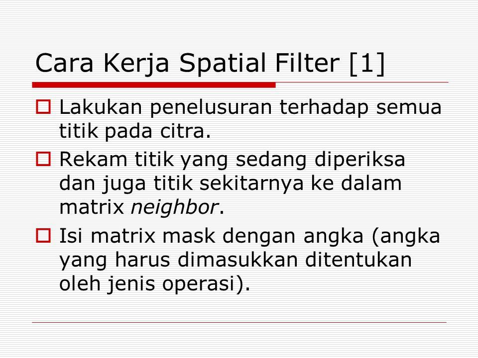 Cara Kerja Spatial Filter [1]  Lakukan penelusuran terhadap semua titik pada citra.  Rekam titik yang sedang diperiksa dan juga titik sekitarnya ke
