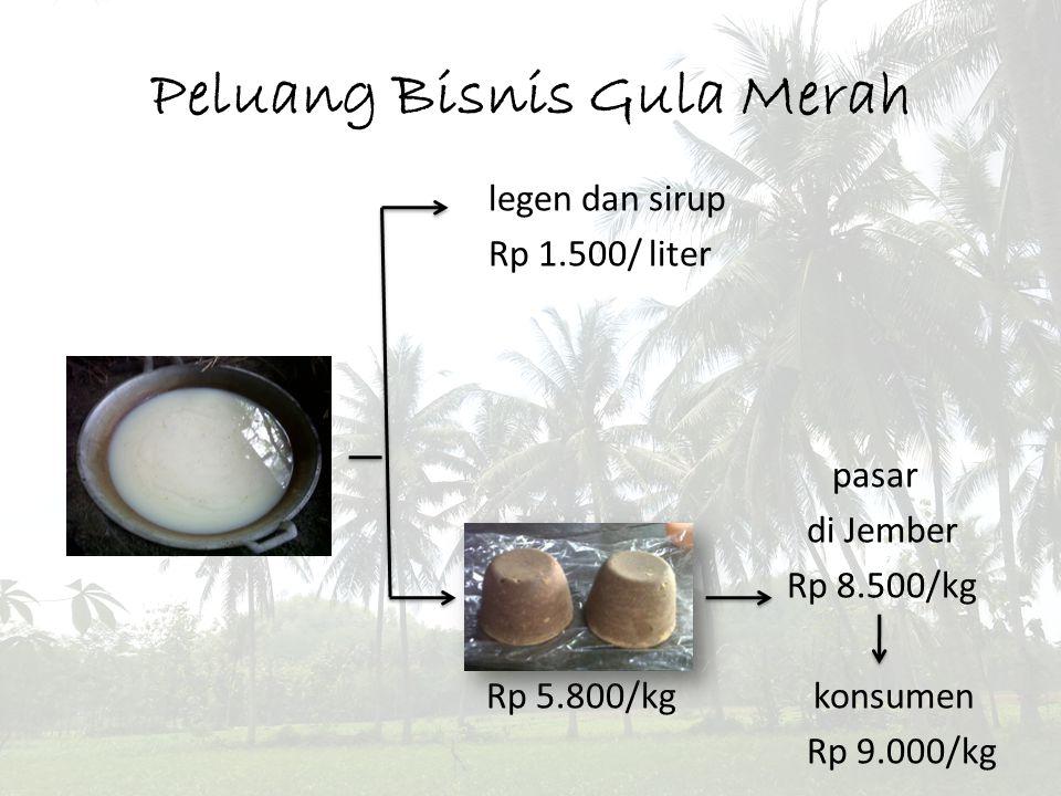 Peluang Bisnis Gula Merah legen dan sirup Rp 1.500/ liter pasar di Jember Rp 8.500/kg Rp 5.800/kg konsumen Rp 9.000/kg