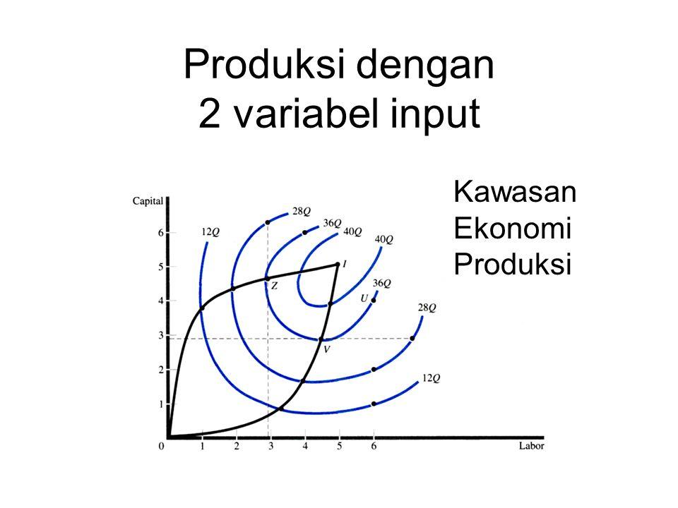 Produksi dengan 2 variabel input Kawasan Ekonomi Produksi