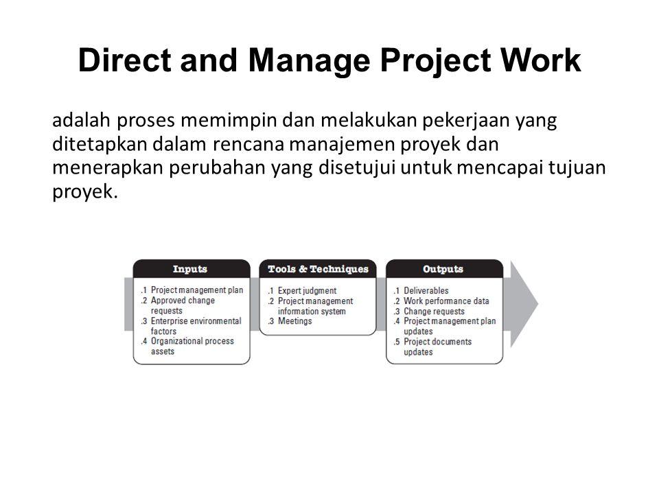 adalah proses memimpin dan melakukan pekerjaan yang ditetapkan dalam rencana manajemen proyek dan menerapkan perubahan yang disetujui untuk mencapai tujuan proyek.