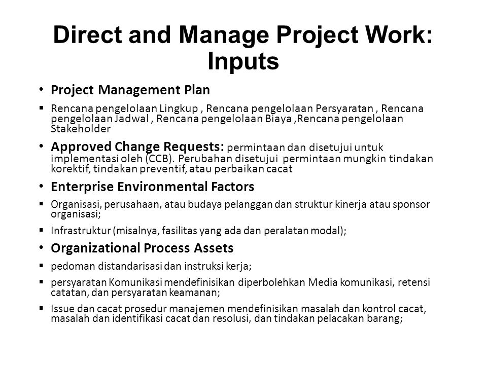 Direct and Manage Project Work: Inputs Project Management Plan  Rencana pengelolaan Lingkup, Rencana pengelolaan Persyaratan, Rencana pengelolaan Jad