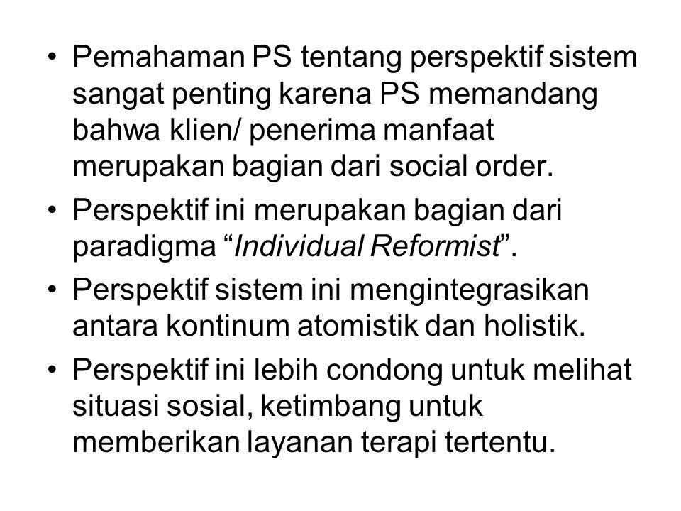 Pemahaman PS tentang perspektif sistem sangat penting karena PS memandang bahwa klien/ penerima manfaat merupakan bagian dari social order.