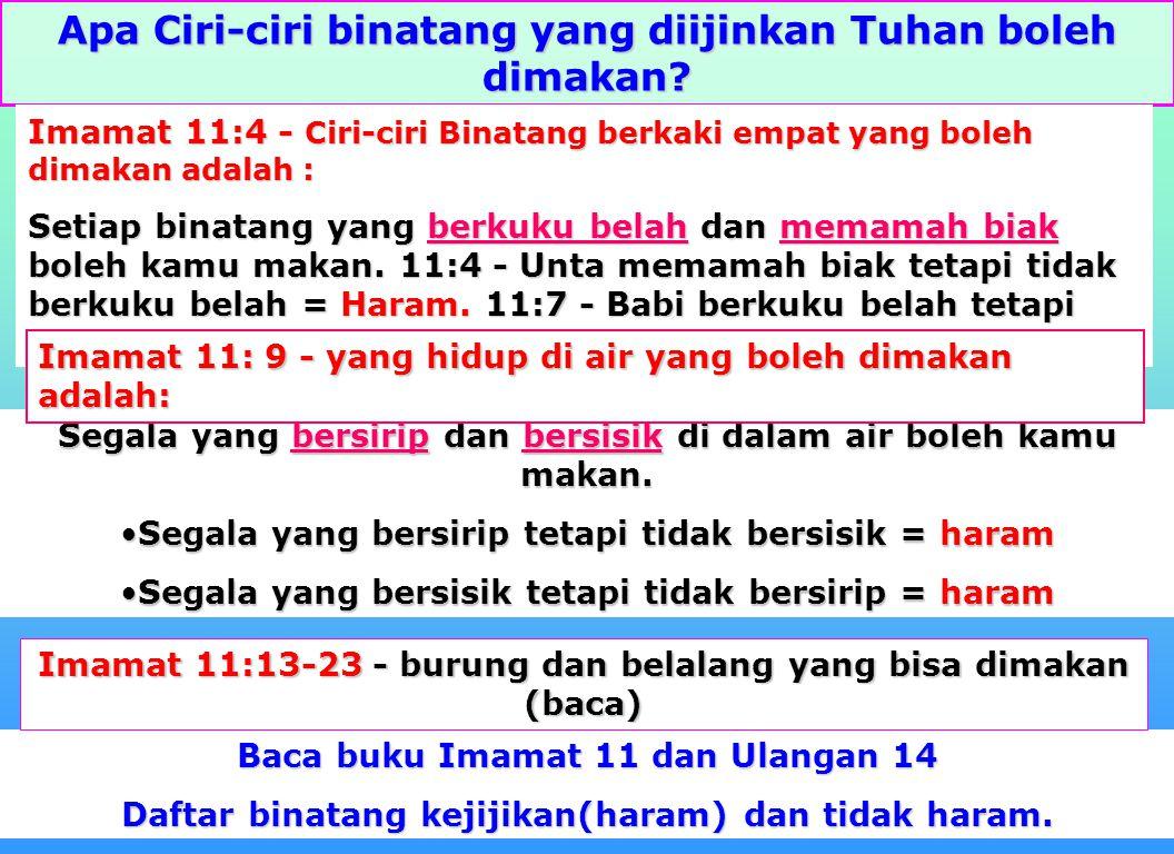 """12 Binatang khusus apa dikatakan Allah tidak layak untuk dimakan? Jawab: """"Juga babi, karena memang berkuku belah, tetapi tidak memamah biak, haram itu"""