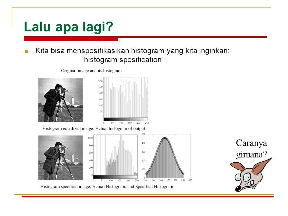 Lalu apa lagi? Kita bisa menspesifikasikan histogram yang kita inginkan: 'histogram spesification' Caranya gimana?