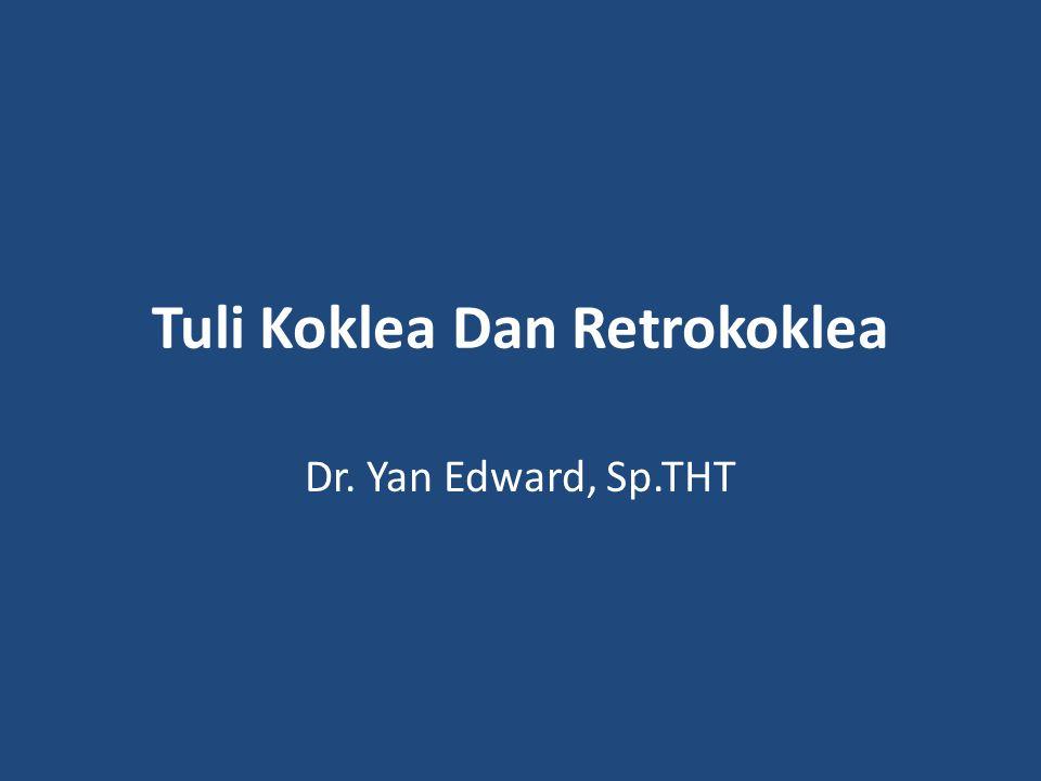 Tuli Koklea Dan Retrokoklea Dr. Yan Edward, Sp.THT