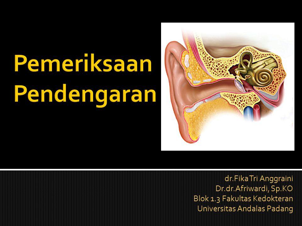 dr.Fika Tri Anggraini Dr.dr.Afriwardi, Sp.KO Blok 1.3 Fakultas Kedokteran Universitas Andalas Padang