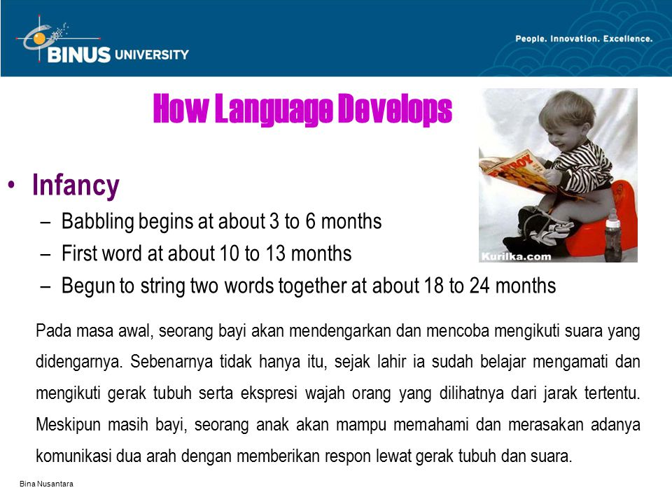 Bina Nusantara How Language Develops Infancy –Babbling begins at about 3 to 6 months –First word at about 10 to 13 months –Begun to string two words together at about 18 to 24 months Pada masa awal, seorang bayi akan mendengarkan dan mencoba mengikuti suara yang didengarnya.
