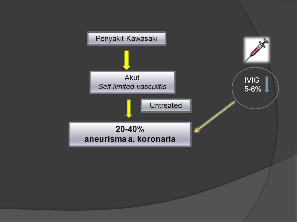 Penyakit Kawasaki Akut Self limited vasculitis 20-40% aneurisma a. koronaria Untreated IVIG 5-6%