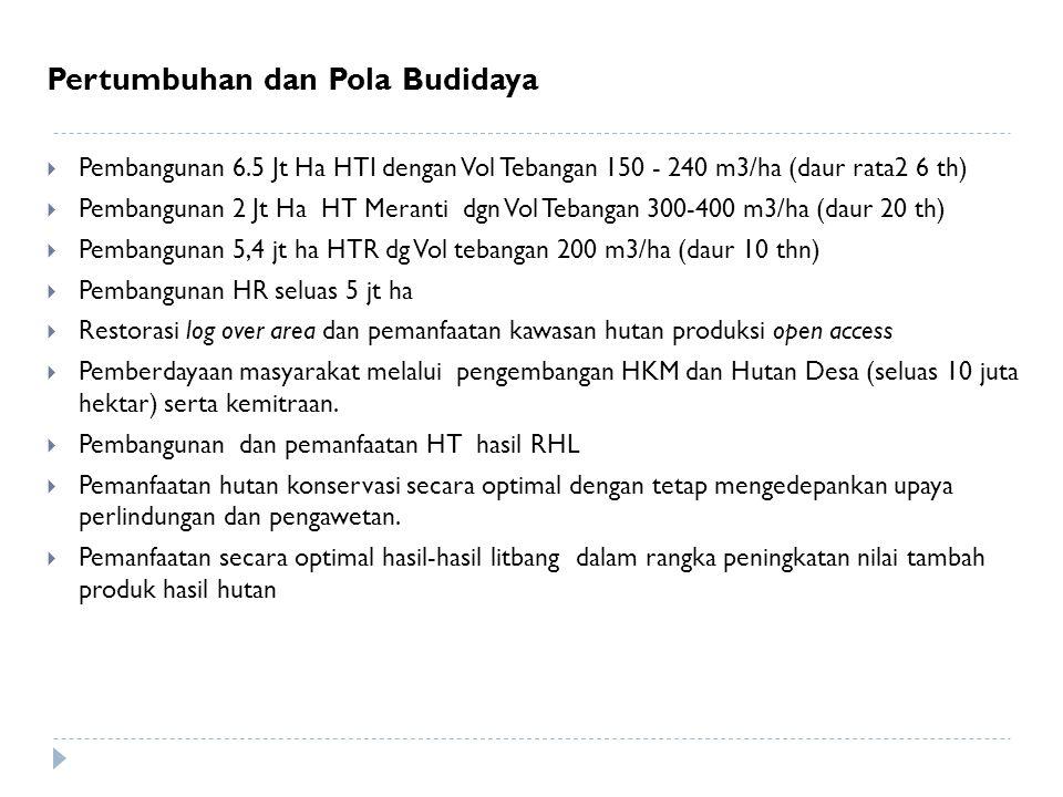 Pertumbuhan dan Pola Budidaya  Pembangunan 6.5 Jt Ha HTI dengan Vol Tebangan 150 - 240 m3/ha (daur rata2 6 th)  Pembangunan 2 Jt Ha HT Meranti dgn V