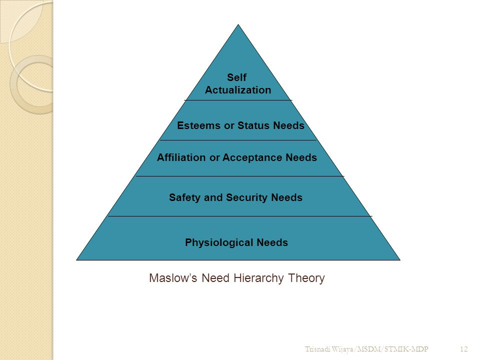Trisnadi Wijaya/MSDM/STMIK-MDP12 Maslow's Need Hierarchy Theory Physiological Needs Safety and Security Needs Affiliation or Acceptance Needs Esteems