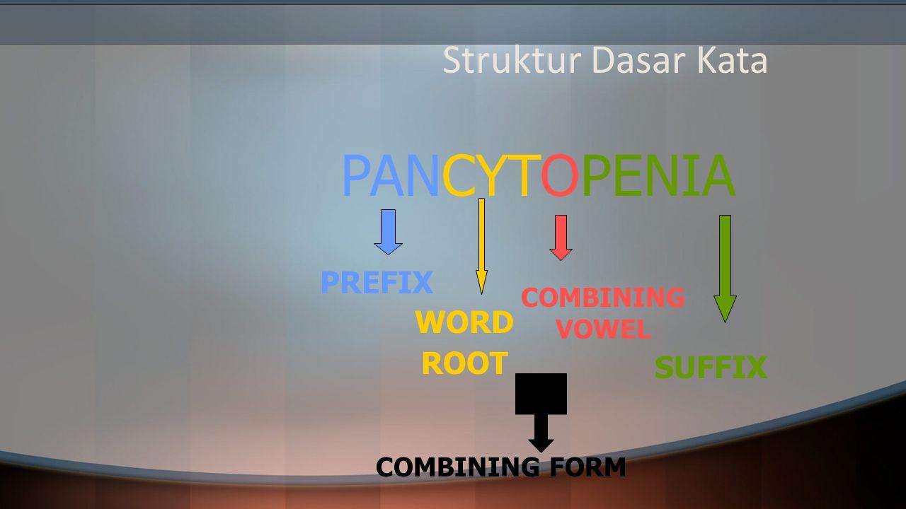 Struktur Dasar Kata PANCYTOPENIA PREFIX WORD ROOT COMBINING VOWEL SUFFIX COMBINING FORM