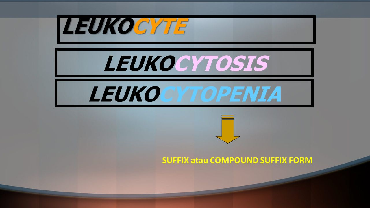 LEUKOCYTE SUFFIX atau COMPOUND SUFFIX FORM LEUKOCYTOSIS LEUKOCYTOPENIA