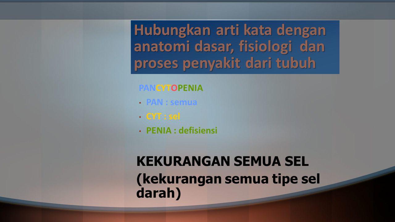 Hubungkan arti kata dengan anatomi dasar, fisiologi dan proses penyakit dari tubuh PANCYTOPENIA PAN : semua CYT : sel PENIA : defisiensi KEKURANGAN SE