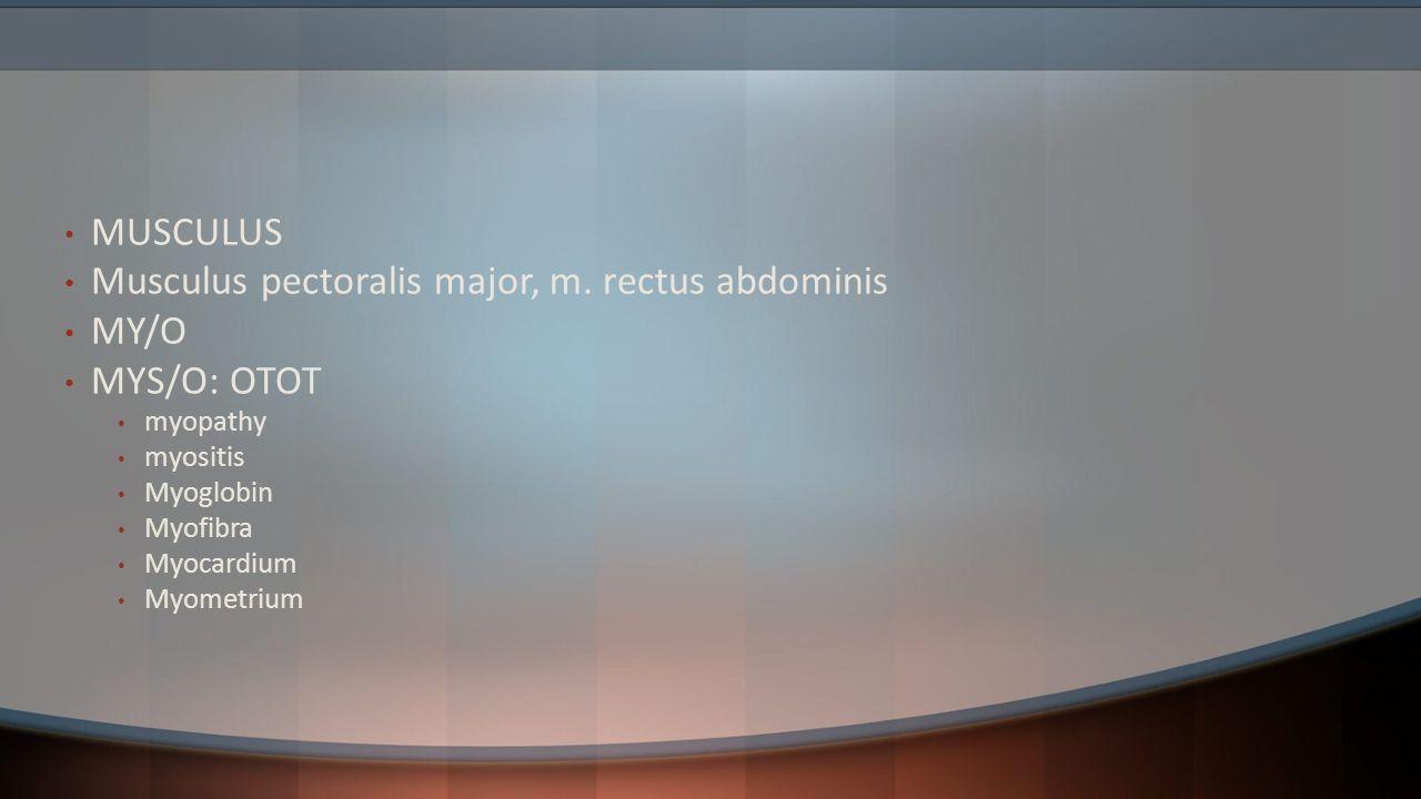 MUSCULUS Musculus pectoralis major, m. rectus abdominis MY/O MYS/O: OTOT myopathy myositis Myoglobin Myofibra Myocardium Myometrium