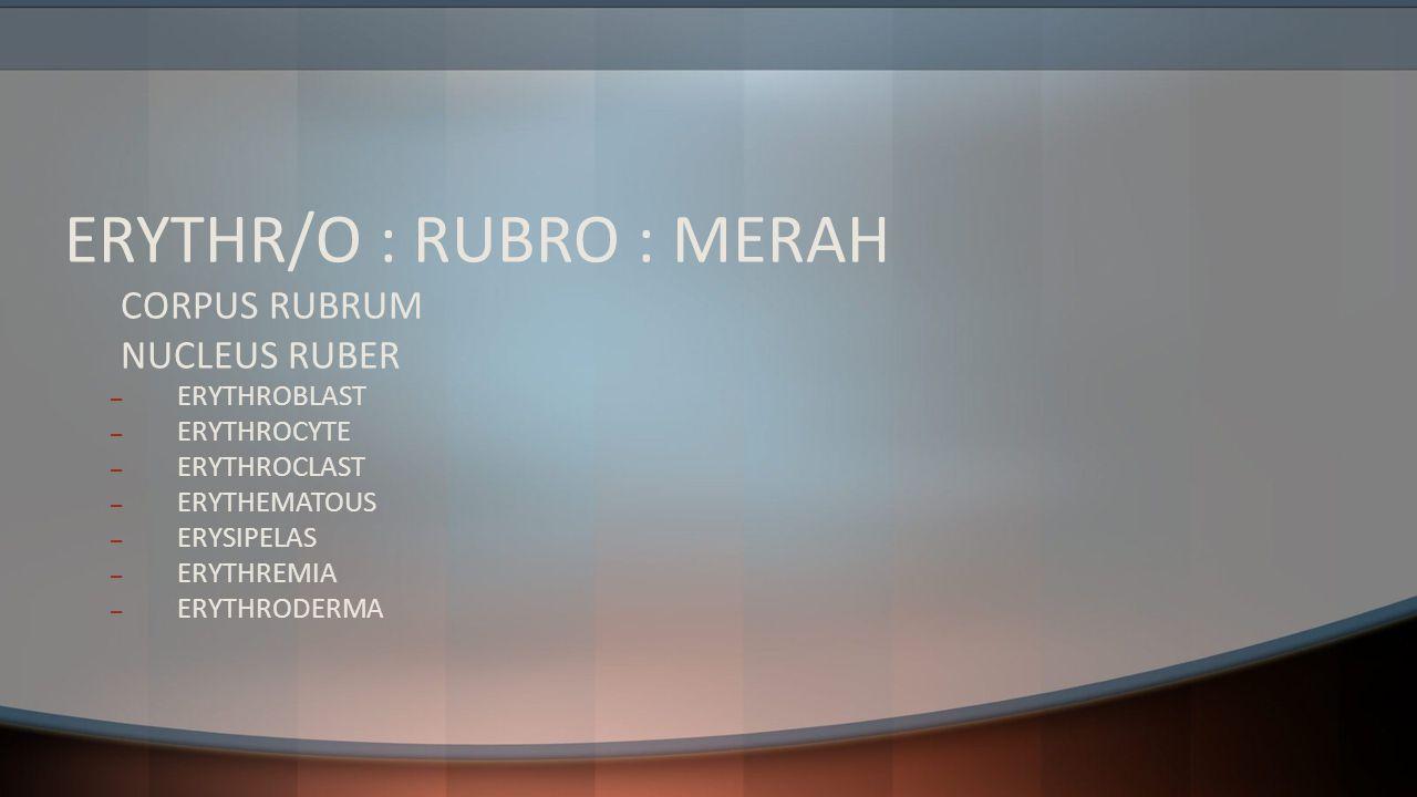 ERYTHR/O : RUBRO : MERAH CORPUS RUBRUM NUCLEUS RUBER – ERYTHROBLAST – ERYTHROCYTE – ERYTHROCLAST – ERYTHEMATOUS – ERYSIPELAS – ERYTHREMIA – ERYTHRODER
