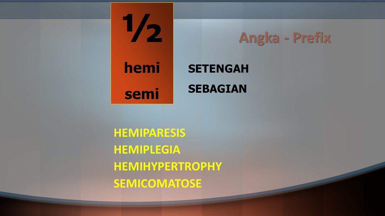 Angka - Prefix HEMIPARESIS HEMIPLEGIA HEMIHYPERTROPHY SEMICOMATOSE ½ hemi semi SETENGAH SEBAGIAN