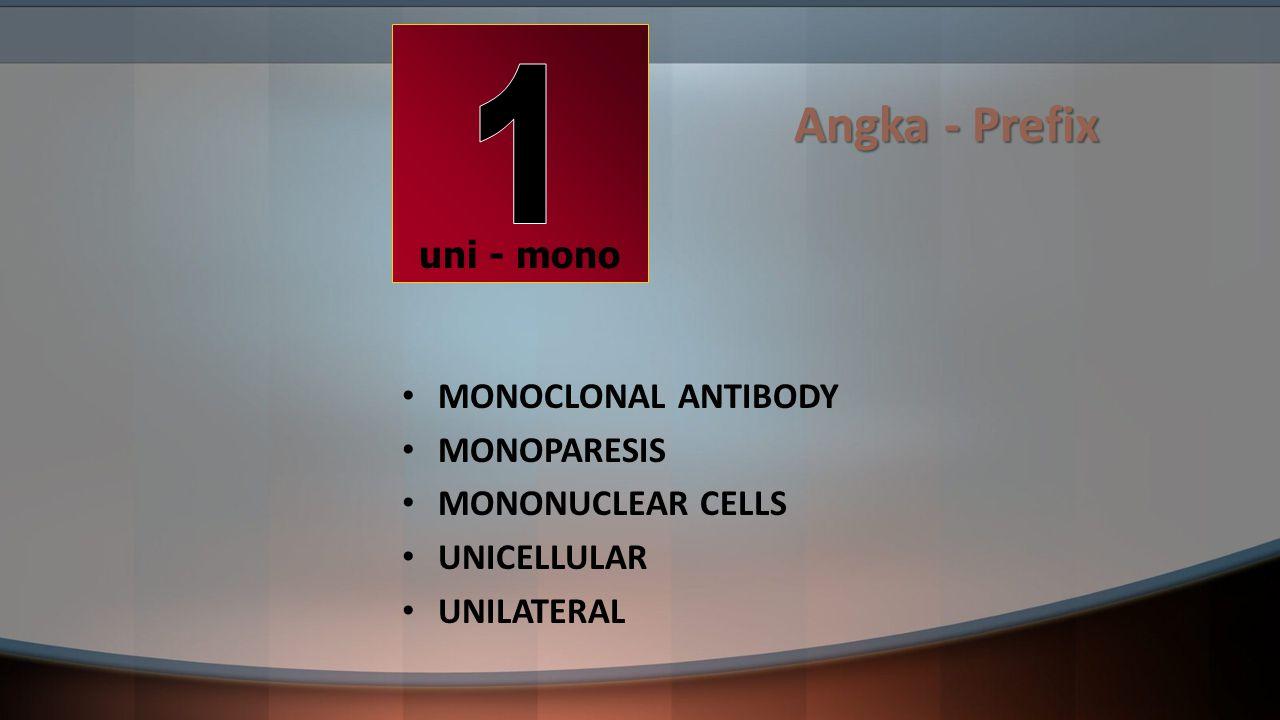 Angka - Prefix MONOCLONAL ANTIBODY MONOPARESIS MONONUCLEAR CELLS UNICELLULAR UNILATERAL uni - mono