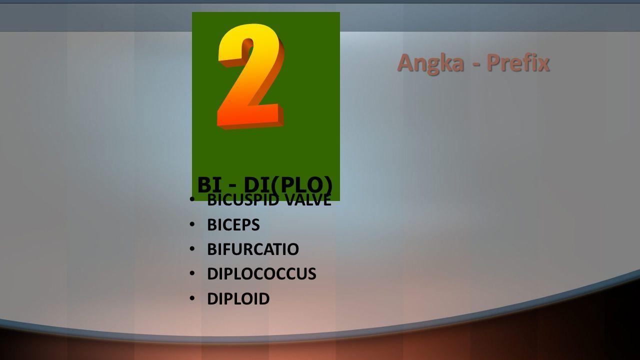 Angka - Prefix BI - DI(PLO) BICUSPID VALVE BICEPS BIFURCATIO DIPLOCOCCUS DIPLOID
