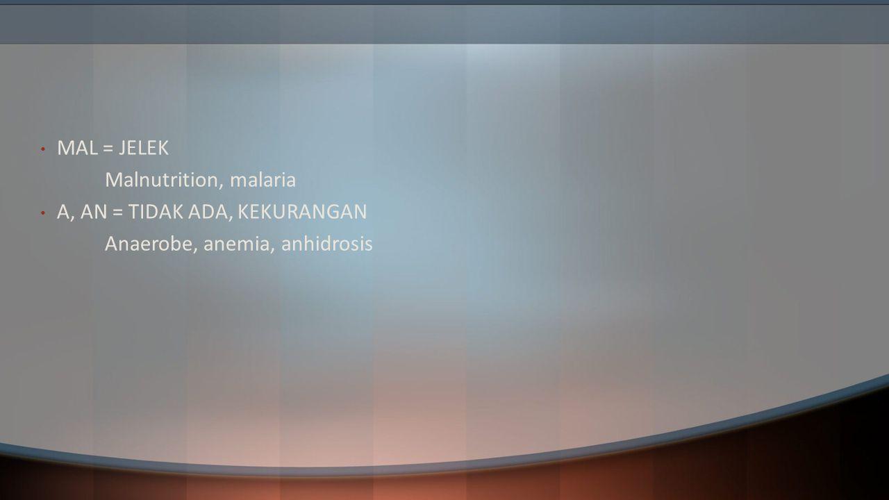 MAL = JELEK Malnutrition, malaria A, AN = TIDAK ADA, KEKURANGAN Anaerobe, anemia, anhidrosis