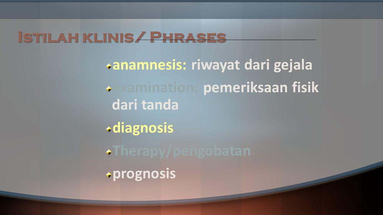 Istilah klinis/ Phrases anamnesis: riwayat dari gejala examination: pemeriksaan fisik dari tanda diagnosis Therapy/pengobatan prognosis