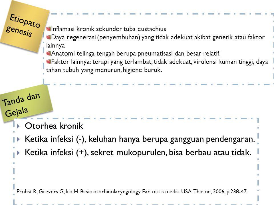 Tanda dan Gejala  Otorhea kronik  Ketika infeksi (-), keluhan hanya berupa gangguan pendengaran.  Ketika infeksi (+), sekret mukopurulen, bisa berb