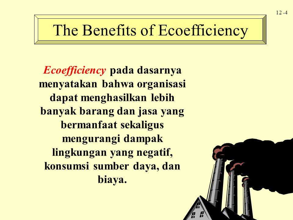 12 -4 Ecoefficiency pada dasarnya menyatakan bahwa organisasi dapat menghasilkan lebih banyak barang dan jasa yang bermanfaat sekaligus mengurangi dam