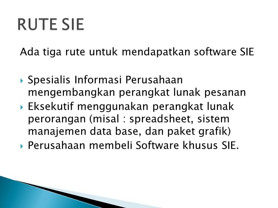 Ada tiga rute untuk mendapatkan software SIE  Spesialis Informasi Perusahaan mengembangkan perangkat lunak pesanan  Eksekutif menggunakan perangkat