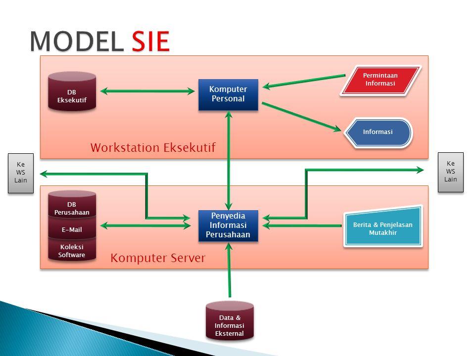 Ada tiga rute untuk mendapatkan software SIE  Spesialis Informasi Perusahaan mengembangkan perangkat lunak pesanan  Eksekutif menggunakan perangkat lunak perorangan (misal : spreadsheet, sistem manajemen data base, dan paket grafik)  Perusahaan membeli Software khusus SIE.