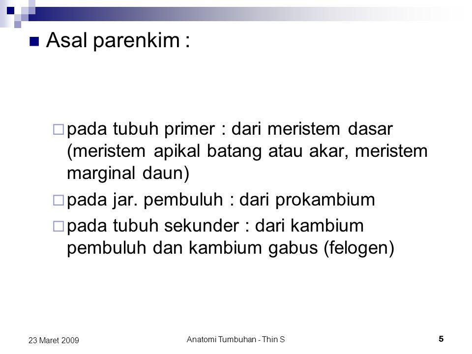 Asal parenkim :  pada tubuh primer : dari meristem dasar (meristem apikal batang atau akar, meristem marginal daun)  pada jar. pembuluh : dari proka