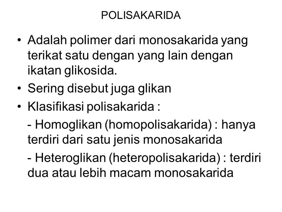 POLISAKARIDA Adalah polimer dari monosakarida yang terikat satu dengan yang lain dengan ikatan glikosida. Sering disebut juga glikan Klasifikasi polis