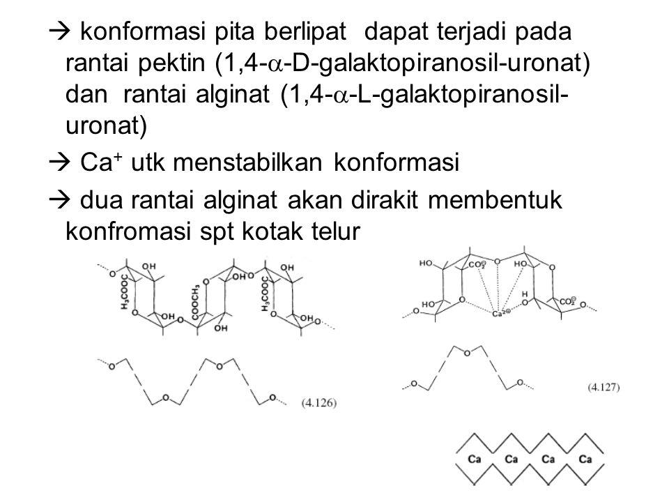  konformasi pita berlipat dapat terjadi pada rantai pektin (1,4-  -D-galaktopiranosil-uronat) dan rantai alginat (1,4-  -L-galaktopiranosil- uronat