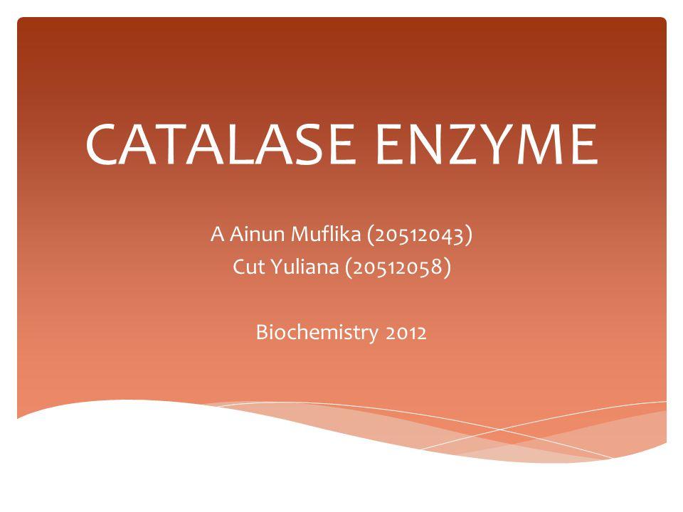 CATALASE ENZYME A Ainun Muflika (20512043) Cut Yuliana (20512058) Biochemistry 2012