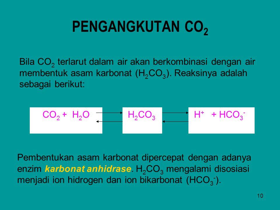 10 PENGANGKUTAN CO 2 Bila CO 2 terlarut dalam air akan berkombinasi dengan air membentuk asam karbonat (H 2 CO 3 ). Reaksinya adalah sebagai berikut: