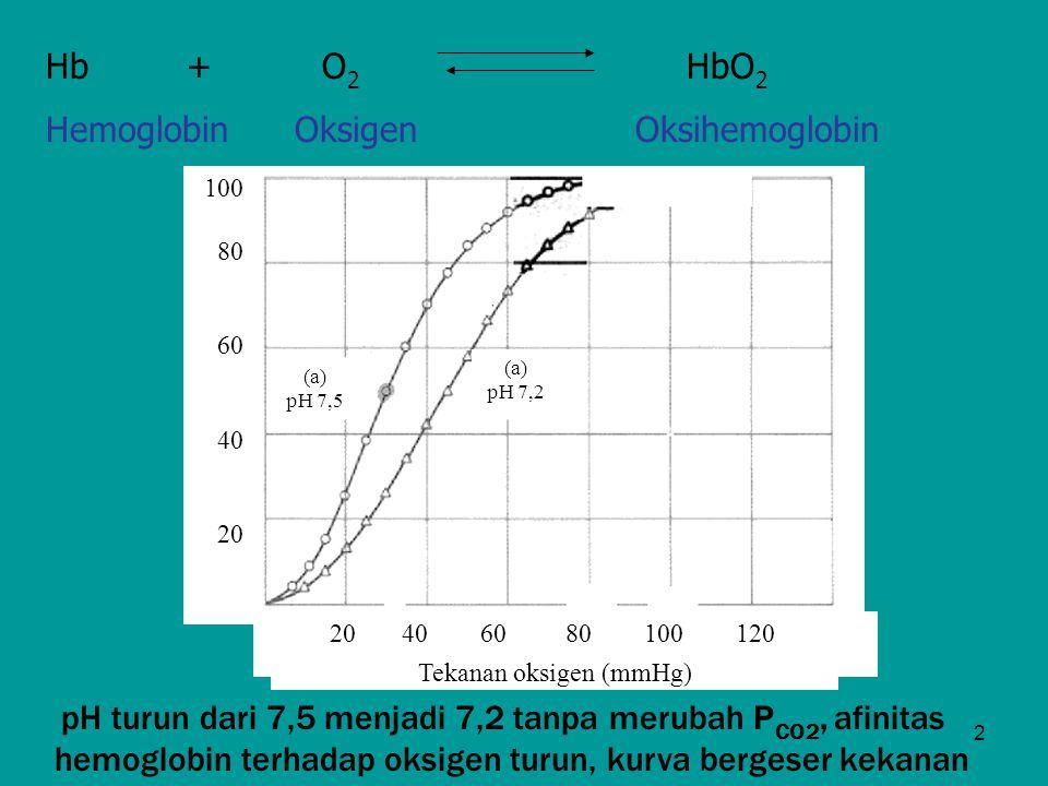 2 Hb + O 2 HbO 2 Hemoglobin Oksigen Oksihemoglobin 100 80 60 40 20 20 40 60 80 100 120 Tekanan oksigen (mmHg) (a) pH 7,5 (a) pH 7,2 pH turun dari 7,5
