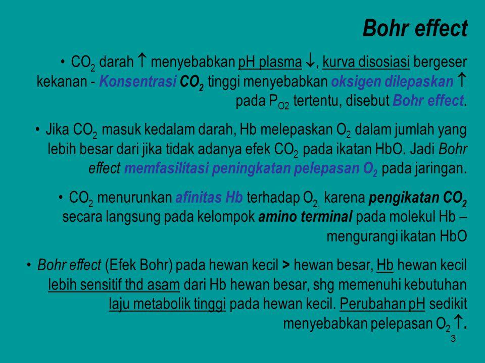 3 Bohr effect CO 2 darah  menyebabkan pH plasma , kurva disosiasi bergeser kekanan - Konsentrasi CO 2 tinggi menyebabkan oksigen dilepaskan  pada P