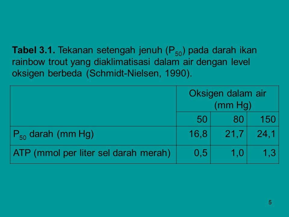 5 Tabel 3.1. Tekanan setengah jenuh (P 50 ) pada darah ikan rainbow trout yang diaklimatisasi dalam air dengan level oksigen berbeda (Schmidt-Nielsen,