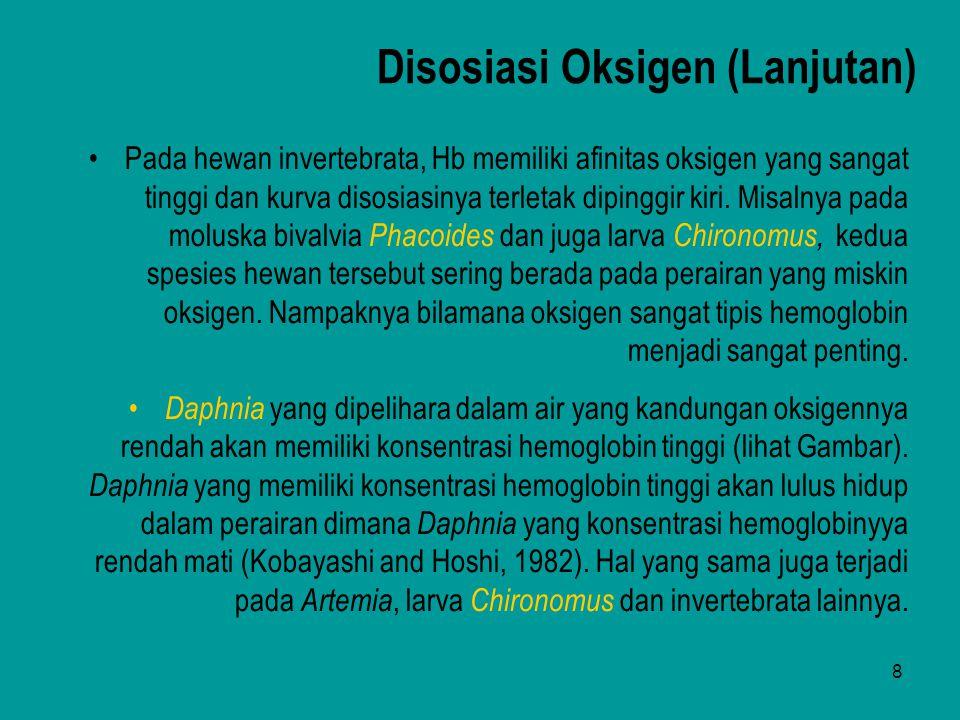 9 Hemoglobin dalam darah (g Hb per 100 ml ) 1,6 1,4 1,2 1,0 0,8 0,6 0,4 0,2 1 2 3 4 5 6 7 8 Oksigen dalam air (ml O 2 per liter) Daphnia bila dipelihara dalam air yang kandungan oksigennya rendah akan memiliki konsentrasi Hb yang meningkat tinggi.