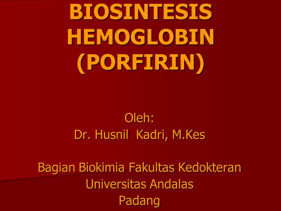 BIOSINTESIS HEMOGLOBIN (PORFIRIN) Oleh: Dr. Husnil Kadri, M.Kes Bagian Biokimia Fakultas Kedokteran Universitas Andalas Padang