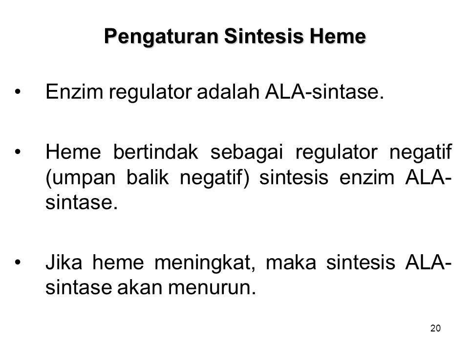 20 Pengaturan Sintesis Heme Enzim regulator adalah ALA-sintase. Heme bertindak sebagai regulator negatif (umpan balik negatif) sintesis enzim ALA- sin