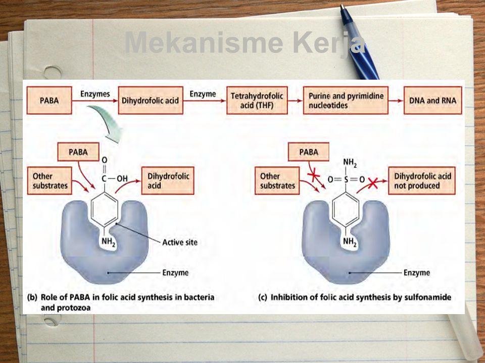 Mekanisme Kerja
