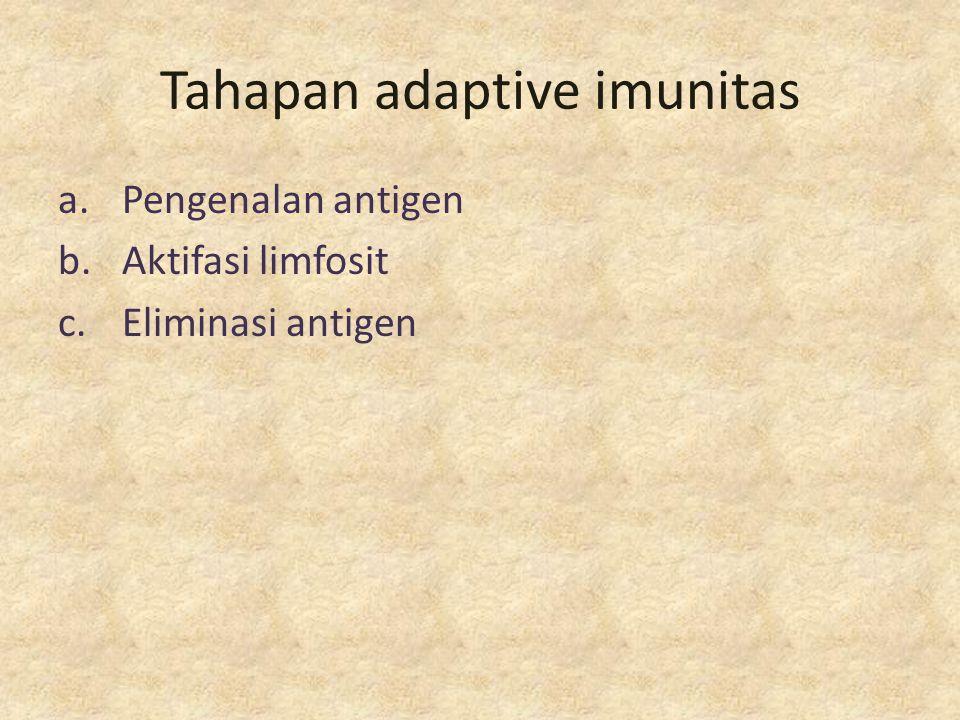 Tahapan adaptive imunitas a.Pengenalan antigen b.Aktifasi limfosit c.Eliminasi antigen