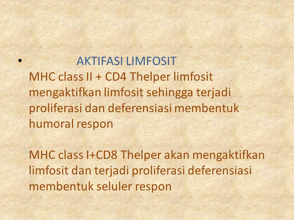 AKTIFASI LIMFOSIT MHC class II + CD4 Thelper limfosit mengaktifkan limfosit sehingga terjadi proliferasi dan deferensiasi membentuk humoral respon MHC
