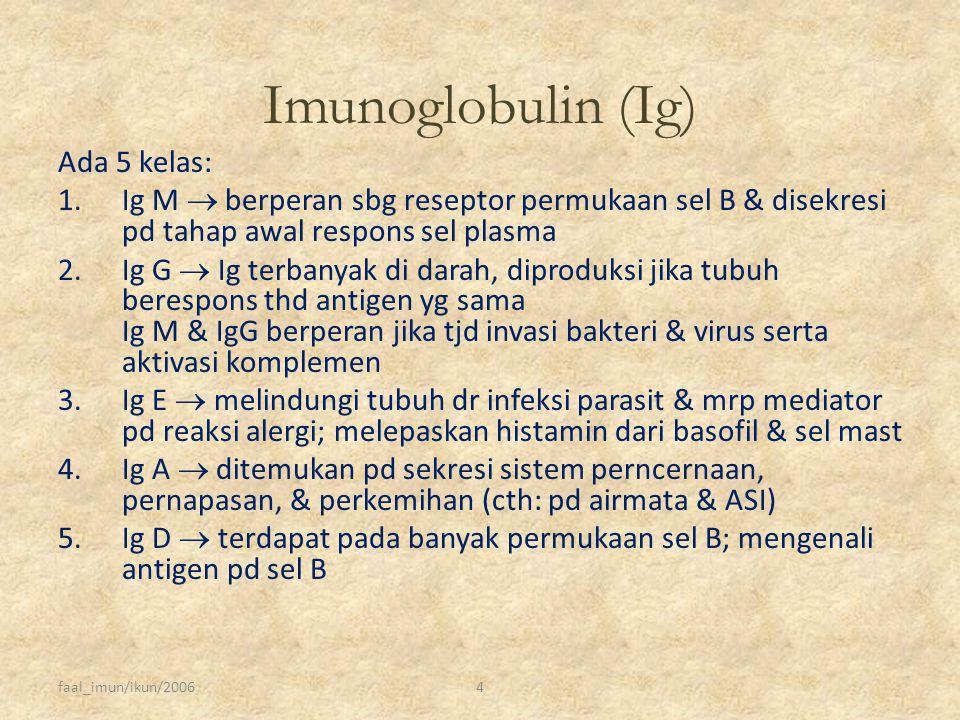 faal_imun/ikun/20064 Imunoglobulin (Ig) Ada 5 kelas: 1.Ig M  berperan sbg reseptor permukaan sel B & disekresi pd tahap awal respons sel plasma 2.Ig