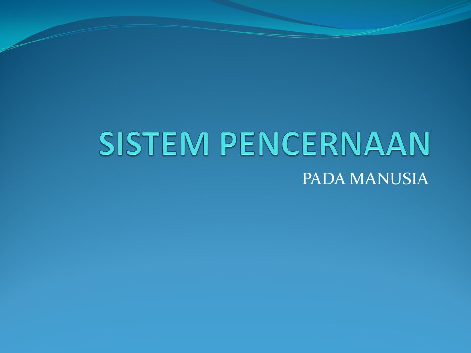 PADA MANUSIA