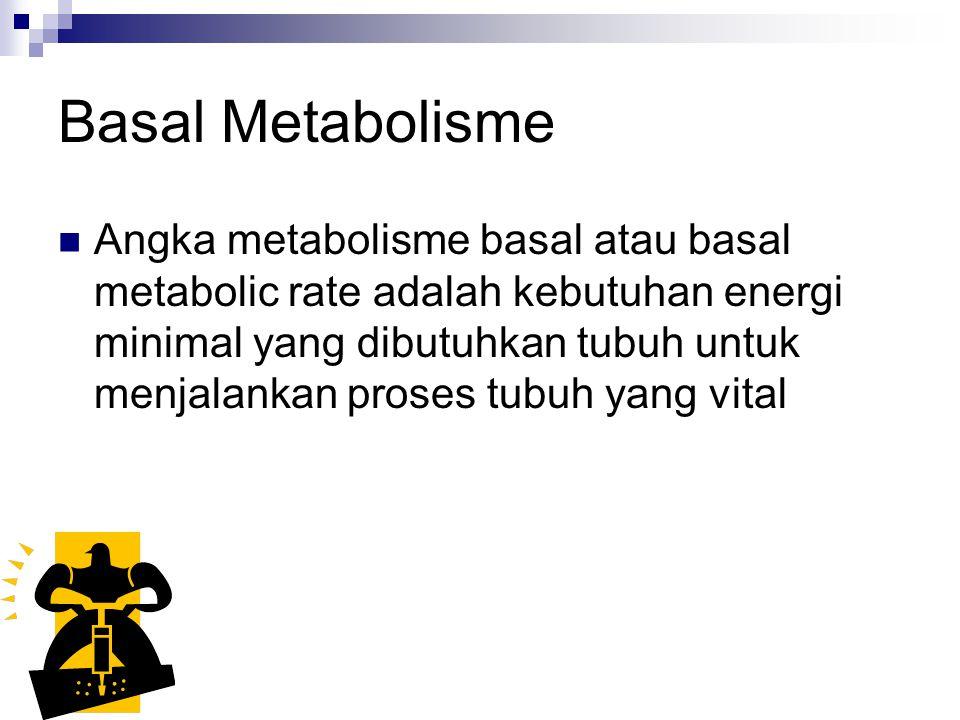 Basal Metabolisme Angka metabolisme basal atau basal metabolic rate adalah kebutuhan energi minimal yang dibutuhkan tubuh untuk menjalankan proses tubuh yang vital