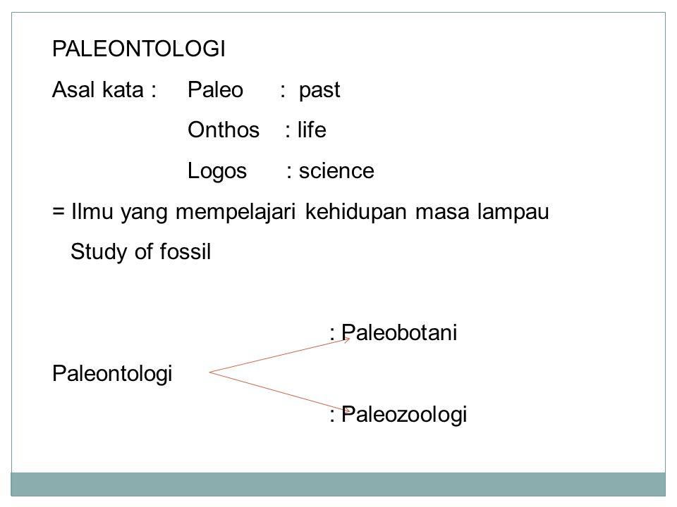 PALEONTOLOGI Asal kata : Paleo : past Onthos : life Logos : science = Ilmu yang mempelajari kehidupan masa lampau Study of fossil : Paleobotani Paleon
